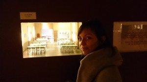 Musée de la miniature et du cinéma dsc_1614-300x168